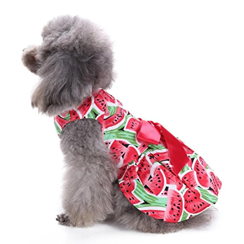Cute Dog Puppy Dress Watermelon Pattern Vest Shirt Sweetie Pet Clothes Sundress (Red, M)