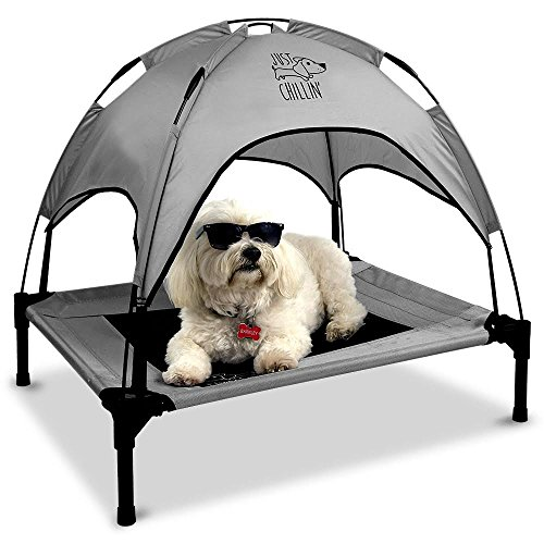 (Floppy Dawg Just Chillin' Elevated Dog Bed | Medium and Large Size Dog Cots in a Variety of Colors | Removable Canopy for Indoor or Outdoor Use | Lightweight and Portable | Let Your Dog Chill in Style)