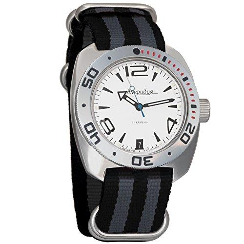 Black Dial Auto (Vostok Amphibian Mens WristWatch AUTO Self-winding Military Diver Amphibia Ministry Case Wrist Watch White Dial #710273 (black+grey))