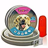 PREMIUM Collar Flea And Tick Prevention For Dogs 6 Months Protection Agains Bites | Itching | Insects | Larvae | Eggs Waterproof Collars For Dog with Fully Adjustable And Dental Toothbrush By Totopets