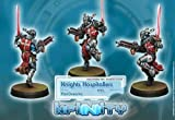 Knights Hospitaler HMG (1) PanOceania Infinity Corvus Belli