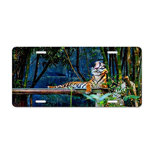 Wonderhorsegala Time Forest Siberian Tiger Rest Yawn Black Personalized Auto Truck Car Front Tag Humor Funny Aluminum Metal License Plate Frame Cover 12 x 6 Inch