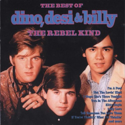 Rebel Kind: Best of Dino Desi & Billy by Dino Desi & Billy