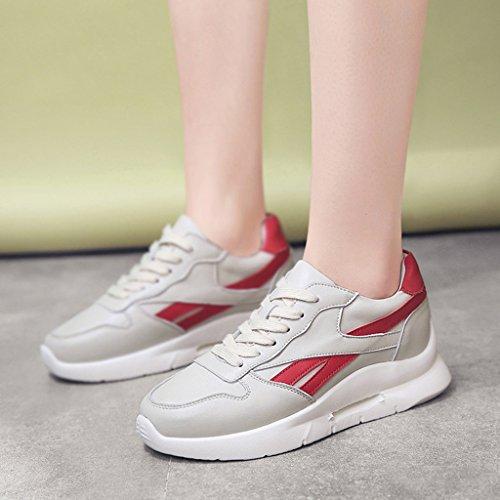 Chaussures lacets Blanc 37 taille Beige de épais de sport femme Couleur HWF printemps à chaussures Chaussures femmes 4dzFFq
