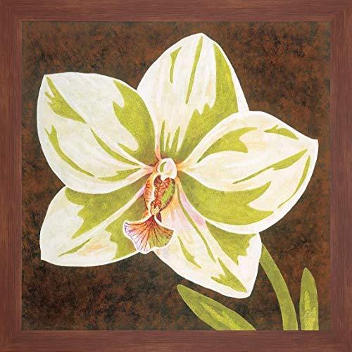 Surabaya Orchid Petites B by Judy Shelby - 24