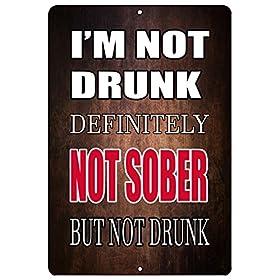 Rogue River Tactical Funny Beer Alcohol Sign Metal Tin Sign Home Bar Kitchen I'm not Drunk Sober