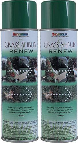 (Seymour 20-602 Grass and Shrub Renew, Pristine Green (2-(Pack)))