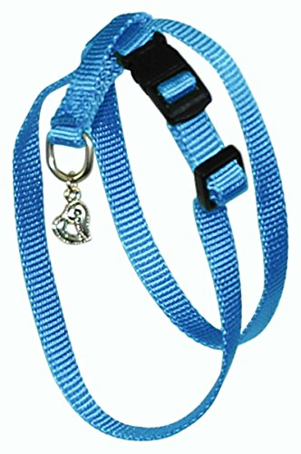 Hamilton B Chea MDBY 3/8-Inch Adjustable Figure 8 Pup-Cat Harness with Brushed Hardware Ring and Charm, Medium, Berry Blue