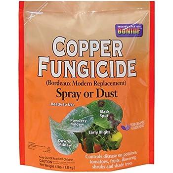 Southern Ag Liquid Copper Fungicide 32oz 1 Quart Fertilizers Garden Outdoor