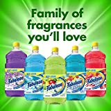 FABULOSO All Purpose Cleaner, Passion of