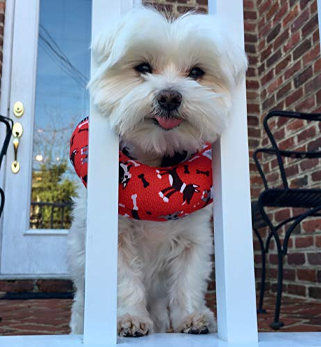 Puppy Bumpers Red Dog (Up to 10