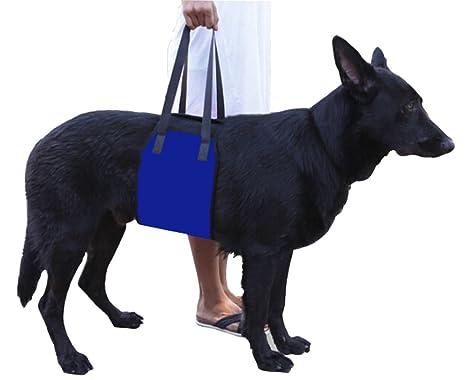 Morezi Arnés de elevación para Perro para Lesiones y Artritis ACL ...