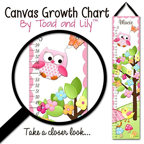 Canvas GROWTH CHART Owls Love Birdies Girls Pink Nature Flowers Kids Bedroom Baby Nursery Wall Art GC0145 (Flowers Canvas Growth Chart)
