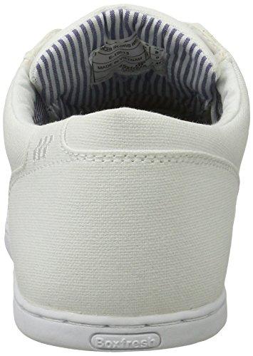 Wei SH Homme White Spencer Boxfresh CNVS Blanc Baskets WHT xvwnHAPzZq