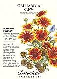 Goblin Blanket Flower Seeds - 300 mg - Gaillardia