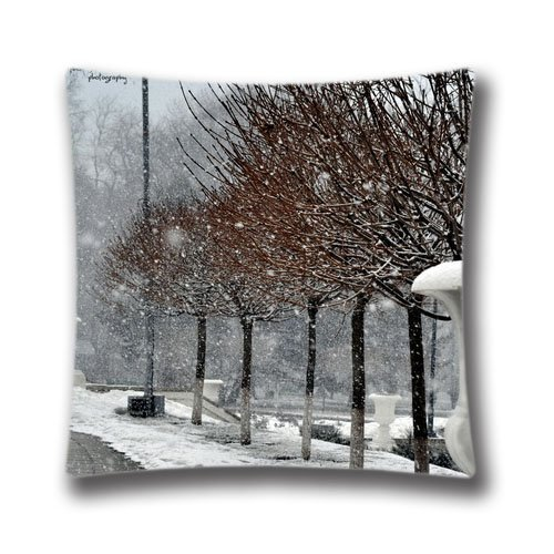 AM Kingdom Natures Throw Pillow Cushion Covers 18