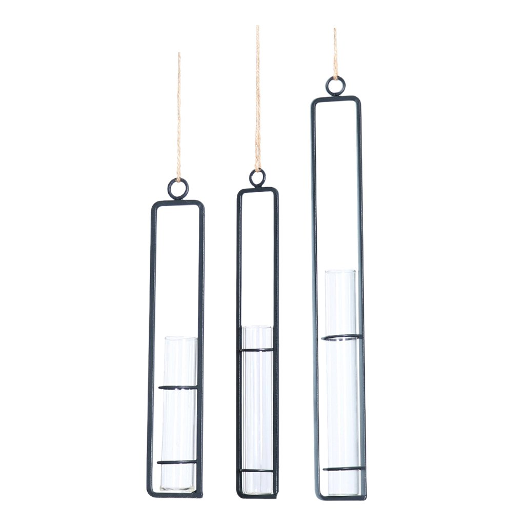 B Blesiya 3 Pieces Clear Glass Test Tube Flower Vases Wall Hanging Plants Planter Terrarium Holder DIY Micro Landscape #2
