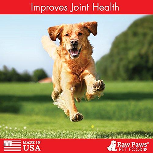 Healthy Paws Dog Food Amazon