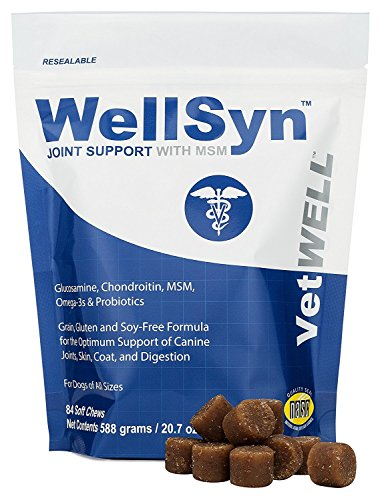VetWELL Glucosamine Joint Supplements for Dogs - with Chondroitin, MSM, Omega 3s and Probiotics for Mobility, Healthy Skin, Shiny Coat, Digestive and Immune Health, 84 WellSyn Soft Chews