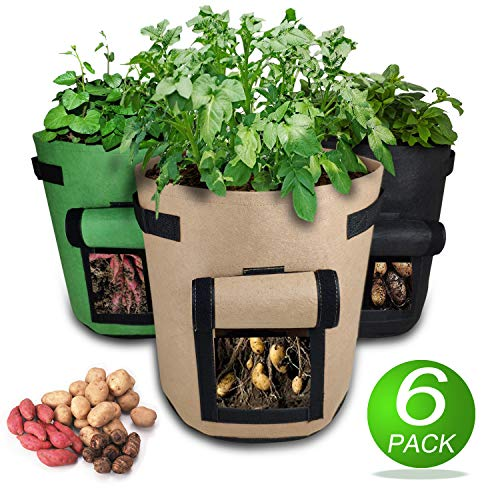 Magarz Potato Grow Bags 7-Gallon 6 Pack Fabric Flower Pots Garden Felt Grow Bags with Handle Vegetables, Fruit, Carrot, Tomato, Onion (Black Brown - Pot Strawberry Strawberries Grow