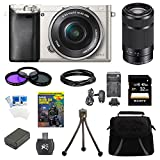 Sony Alpha a6000 24.3 Interchangeable Lens Camera Silver with 16-50mm Power Zoom Lens BUNDLE with SEL 55-210, 32GB Class 10 Card, Spare Battery, Deluxe Padded Case, and MORE Review