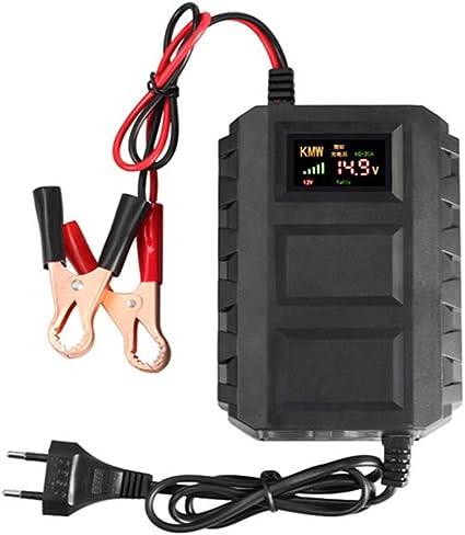ZQQFR Chargeur de Batterie Chargeur Float Batterie sans 12V