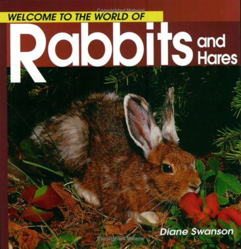 rabbits-and-hares-welcome-to-the-world-of