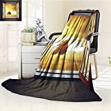 YOYI-HOME Silky Soft Plush Warm Duplex Printed Blanket an Open Window to A Sunny Spring Birds Countryside Landscape Image Pattern Yellow Green Anti-Static,2 Ply Thick,Hypoallergenic/W59 x H79