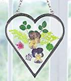 Heart Shaped Suncatcher with Real Pressed Flowers in Glass and Silver Metal - Gift for a Loved One Wife Girlfriend Fiance Valentine's Day Housewarming Gift