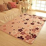 Rug WAN SAN QIAN- Economy Nordic Living Room Carpet Country Style Home Carpet Bedside Bedside Blanket Coral Villi Carpet (Color : B, Size : 200x150cm)