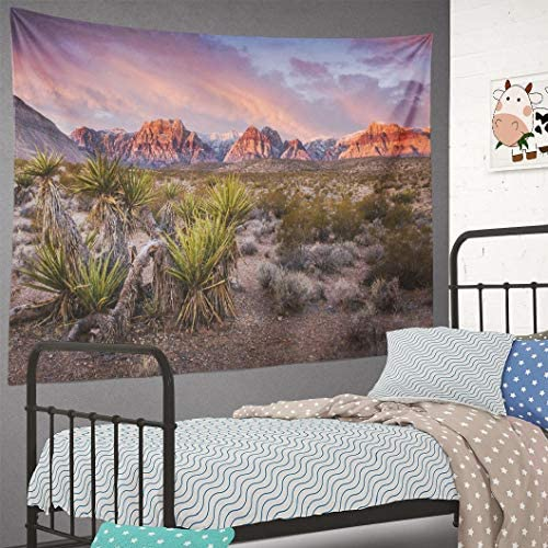 Summor Tapestry Sunrise Red Rock Rock Red Vegas N al Park Desert Landscape Sky Sunrise Blue Cactus Dawn Hanging Tapestries 60 x 80 inch Wall Hanging Decor for Bedroom Livingroom Dorm