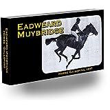 Fliptomania Muybridge Horse Flipbook