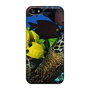 Sanp On Case Cover Protector For Iphone 5/5s (sea Turtle)
