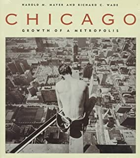 Blueprint for disaster the unraveling of chicago public housing chicago growth of a metropolis malvernweather Images