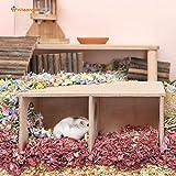 Niteangel Hamster Secret Peep Shed 2-Chamber