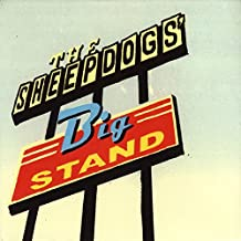 Sheepdogs' Big Stand