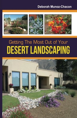 Getting The Most Out of Your Desert Landscaping