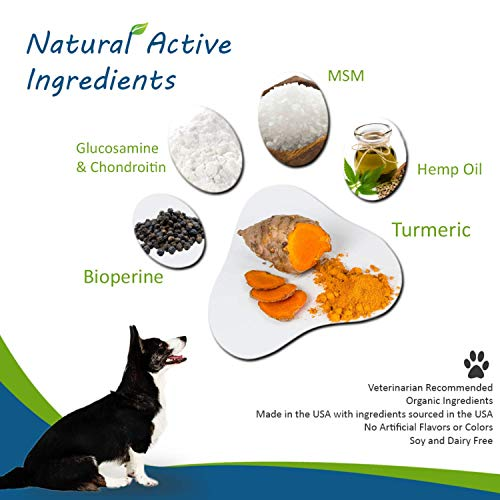 Natural Dog Hip & Joint Supplement for Dogs Arthritis Pain Relief. Turmeric Curcumin with Black Pepper for Anti Inflammatory. Tumeric MSM Glucosamine Chondroitin for Dogs Healthy Joints - 90 Chews