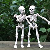 Kalttoyi Movable Mr. Bones Skeleton Human Model Skull Full Body Mini Figure Toy Halloween