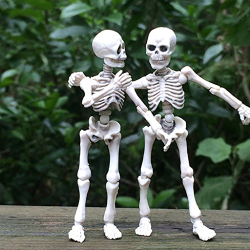 Kalttoyi Movable Mr. Bones Skeleton Human Model Skull Full Body Mini Figure Toy Halloween]()