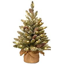 National Tree 2 Foot Snowy Concolor Fir Tree with Snowy Cones and 50 Battery Operated Warm White LED Lights in Burlap Base (SR1-328-20-B)