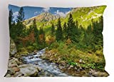 Lunarable Outdoor Pillow Sham, Roztoka Stream Tatra National Park Carpathian Mountains Poland Woods, Decorative Standard King Size Printed Pillowcase, 36 X 20 inches, Green Light Green Tan