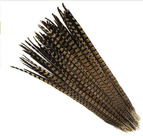celine-lin-10pcs-natural-pheasant-feathers-pheasant-tails-14-16inch35-40cmnatural