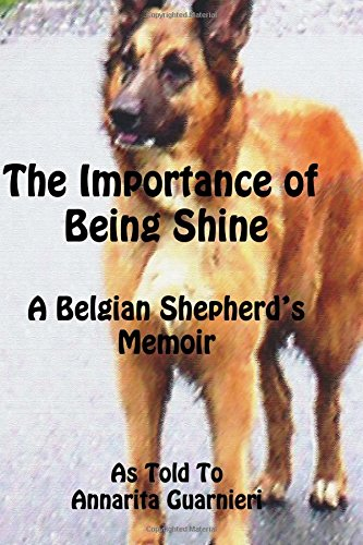 The Importance of Being Shine ebook
