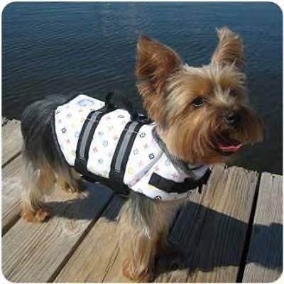 Paws Aboard Nautical Designer Doggy Life Jacket Xsmall