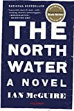 The North Water: A Novel (Paperback) ~ Ian McGuire Cover Art