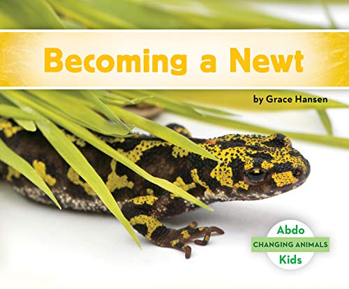 Becoming a Newt (Changing Animals)