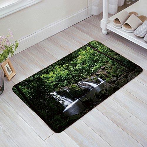 (Decor Love Green Forest Waterfall Pattern Welcome Mats Non-Skid Slip Rubber Entrance Mats Rugs Shoes Scraper Indoor/Front Door/Bathroom/Kitchen/Bedroom 20 x 31.5 inch)