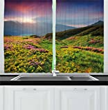 Ambesonne Nature Kitchen Curtains, Summer Season Scene with Fresh Flowers Green Foliage Mountain Landscape Ukraine, Window Drapes 2 Panel Set for Kitchen Cafe, 55 W X 39 L Inches, Pink Green Blue For Sale