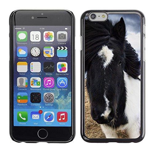 "Premio Sottile Slim Cassa Custodia Case Cover Shell // V00004033 chevaux islandais sauvages // Apple iPhone 6 6S 6G 4.7"""